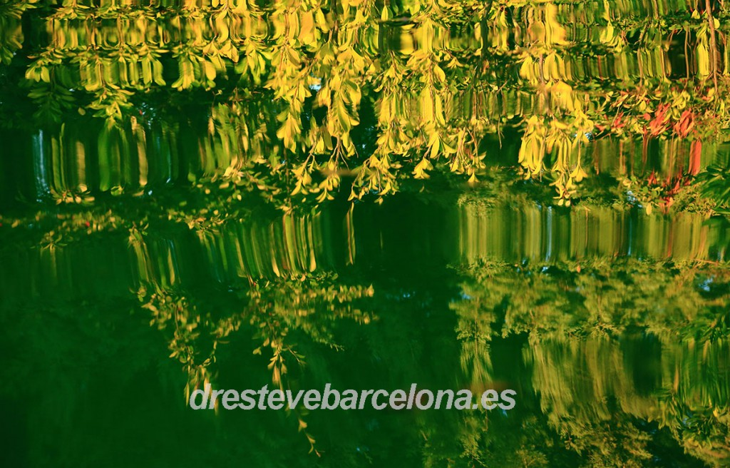 Los consejos de Esculapio - Dr. Esteve Barcelona