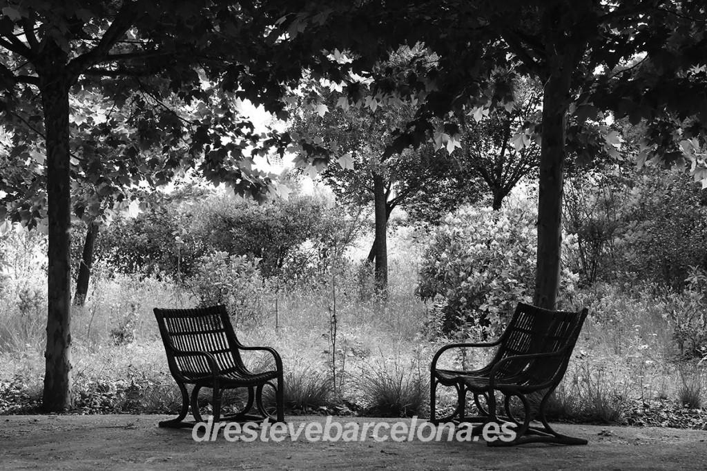 El secreto médico - Dr. Esteve Barcelona